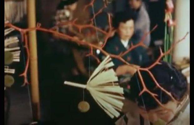 ikebana,2